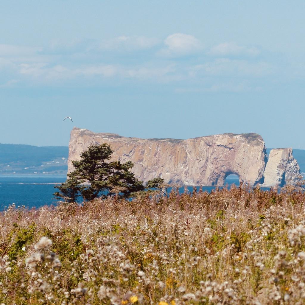 Québec 5 # Rocher Percé et l'île de Bonaventure